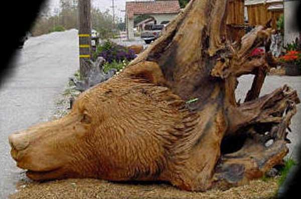 Chainsaw Art Bear Head Stump